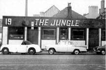 Jungle the