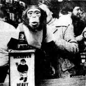 Stirling Castle Bar with monkey 1976