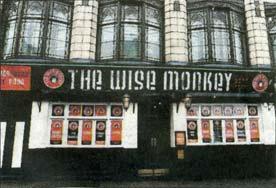 Wise Monkey 2010